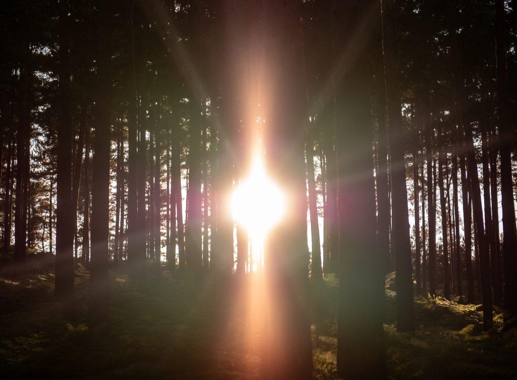 uno spiraglio di luce trovare il proprio essere dentro un ambiente che non ci rappresenta scomfort zone