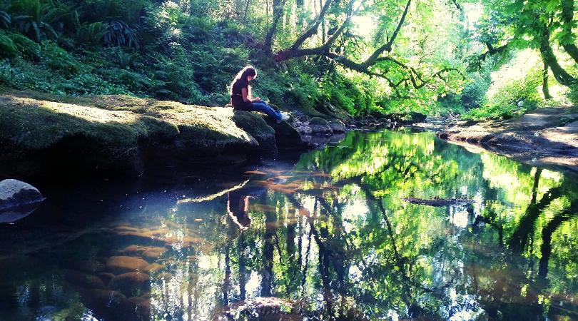mindfulness e meditazione nel bosco dove fare forest bathing
