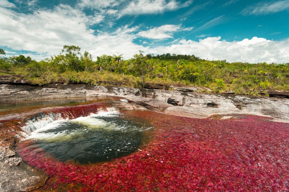 fiume colorato in colombia cosa fare cano cristales