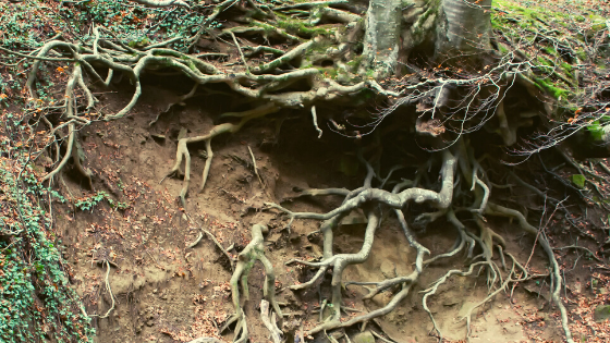 trekking cascata acquacheta parco nazionale foreste casentinesi