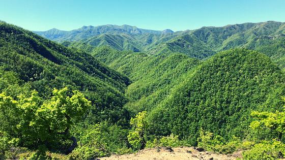 trekking da cà di veroli a rio petroso itinerario a piedi foreste casentinesi romagna forlì-cesena