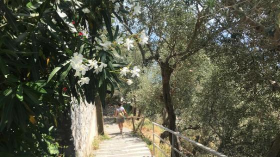 scalini per scendere da nocelle a positano sentiero degli dei trekking