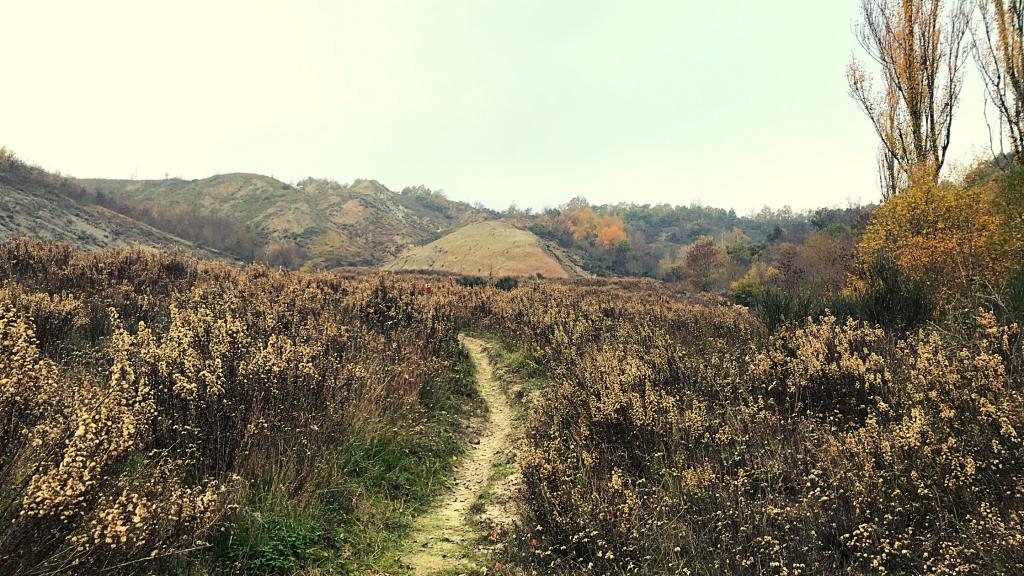 trekking a piedi monte sole bologna