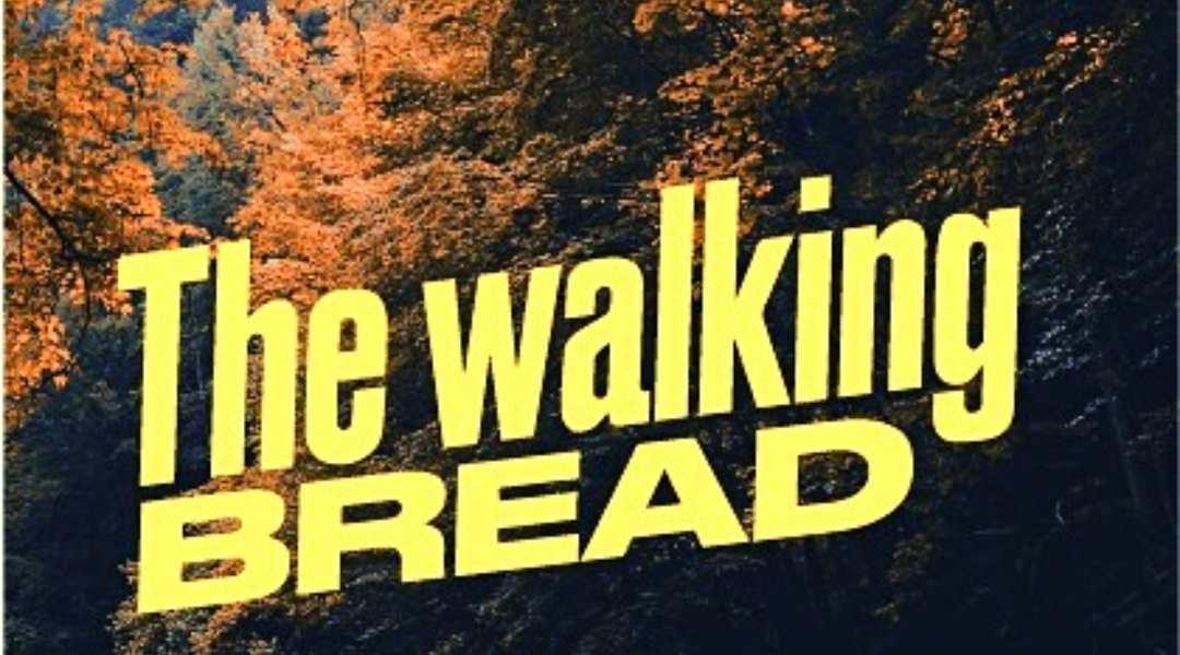 the walking bread trekking e fare il pane foreste casentinesi